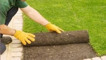 Turfing and Lawns